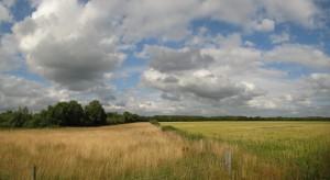 Landschap in Noord-Drenthe